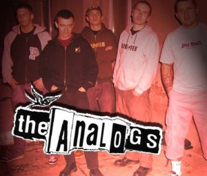the_analogs